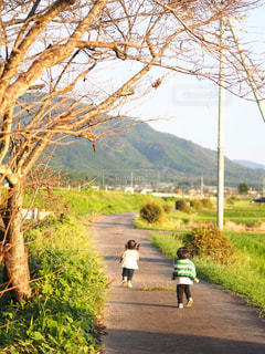 家族,自然,散歩,仲良し,兄弟,田園風景,ツーショット