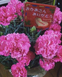 No.383113 花