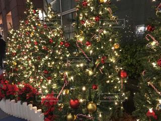 クリスマス ツリーの写真・画像素材[949391]