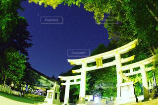 背景の木と家の写真・画像素材[786866]