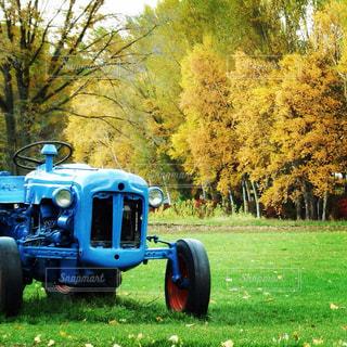 農家の秋の写真・画像素材[844198]
