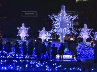 札幌ホワイトイルミネーションの写真・画像素材[908620]