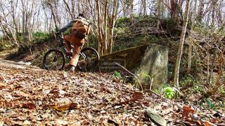 自然の中へMTBハイクの写真・画像素材[1410265]