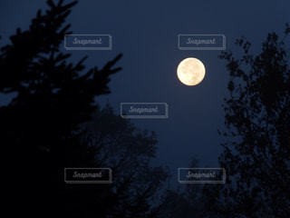 秋の夜長まったりキャンプの写真・画像素材[1492139]
