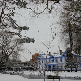 自然,公園,雪,白,北海道,雪景色,景色,ホワイト,中島公園,札幌市,スノー,豊平館