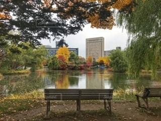 晩秋の札幌の写真・画像素材[2655711]