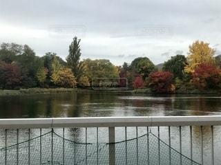 晩秋の中島公園の写真・画像素材[2661593]