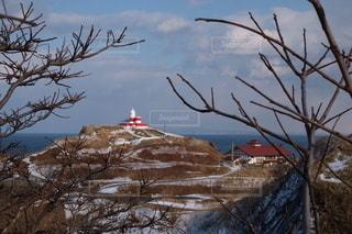 北海道小樽 冬の日和山灯台の写真・画像素材[3605447]