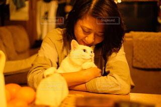 甘えん坊なネコの写真・画像素材[4134820]