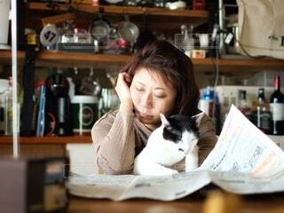 猫あるある!新聞読むと邪魔しに来る。の写真・画像素材[4162940]