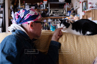 おやじと猫の写真・画像素材[4220723]