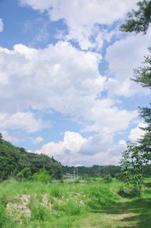夏のとある日の写真・画像素材[2433245]