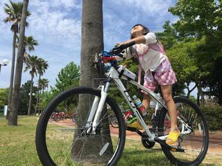 自転車 - No.423022