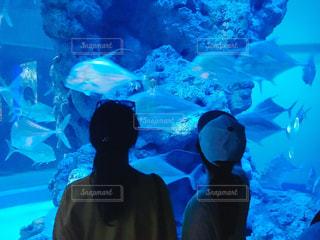 水族館,外国,シンガポール,アクアリウム,姉妹,家族旅行,ツーショット