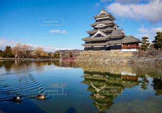 風景,アウトドア,空,雲,青空,水面,城,日本,鴨,休日,松本城,お出かけ,日中