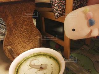 ぬいぐるみのウーパールーパーとのご対面💕の写真・画像素材[729279]