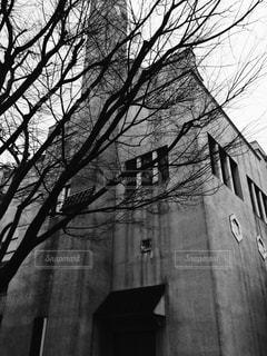 大規模なれんが造りの木の上部に時計と建物の写真・画像素材[820475]
