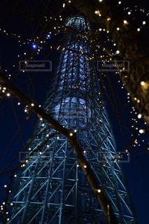 夜にライトアップされたクリスマスツリーの写真・画像素材[2799878]