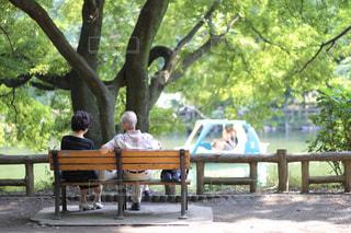 公園のベンチに座っている人の写真・画像素材[2438791]