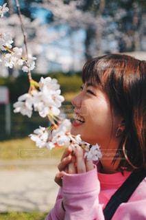 桜を見て笑顔にの写真・画像素材[1135352]