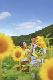 花のクローズアップの写真・画像素材[3497785]