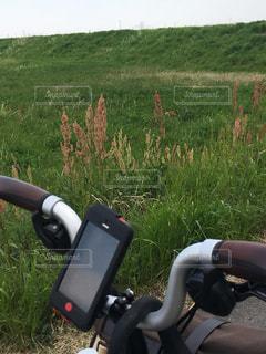 自転車の写真・画像素材[461396]