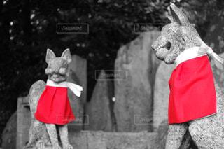 赤い帽子をかぶったテディベアの写真・画像素材[917687]