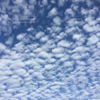 空,秋,白,雲,うろこ雲,運動場,秋空,もこもこ