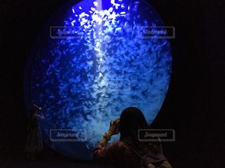 クラゲ水槽の写真・画像素材[784262]