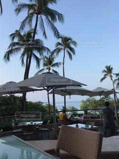 朝食,ハワイ,ハワイ島,テラス席,プリンスホテル