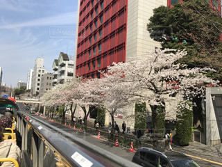 春 - No.414881