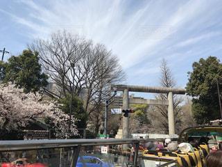 春 - No.414893