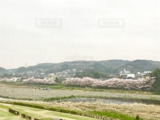 風景 - No.420684