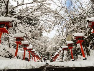 貴船神社の雪の写真・画像素材[910493]