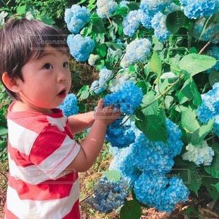 庭に立っている小さな男の子の写真・画像素材[3377742]