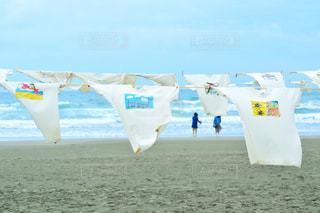 海の写真・画像素材[466434]