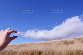 乾いた草のフィールドに立っている人の写真・画像素材[1610875]