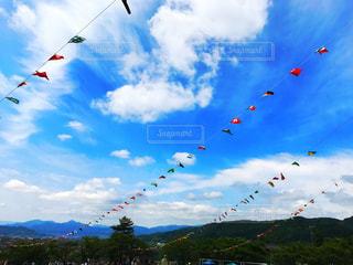 空中に凧の飛行の人々 のグループの写真・画像素材[771469]