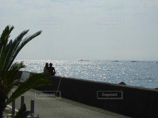 海の写真・画像素材[382617]