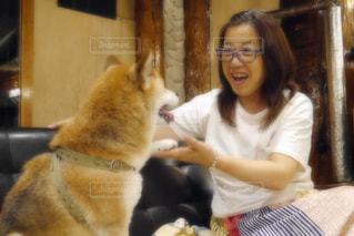 愛犬に癒されタイムの写真・画像素材[1371335]