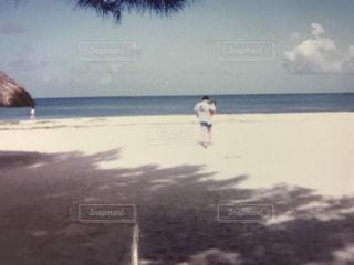 家族の写真・画像素材[417781]