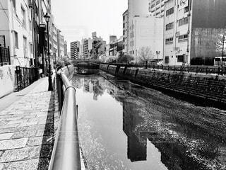名古屋,伏見,納屋橋,桜流し