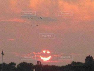 空を飛んでいる鳥の群れの写真・画像素材[1307736]