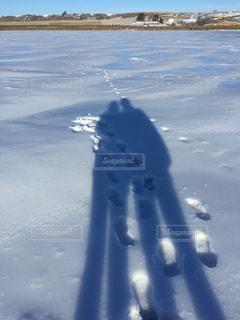 冬,湖,青空,アメリカ,ツーショット