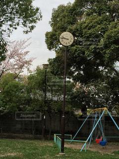 公園の写真・画像素材[455465]