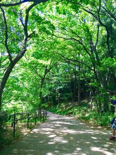 公園 - No.469715