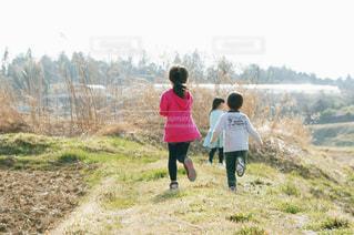 自然,緑,後ろ姿,走る,田んぼ,ポートレート,畑,福島県,福島