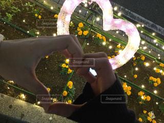 恋人,花,夜,カップル,ネオン,ハート,花壇,駅前,デート,いつもの風景,本八幡