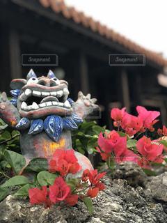 れんが造りの建物の上に花の花瓶の写真・画像素材[1017392]