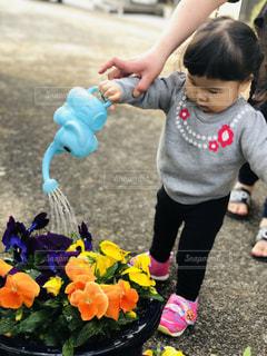 象と花と娘の写真・画像素材[2142992]
